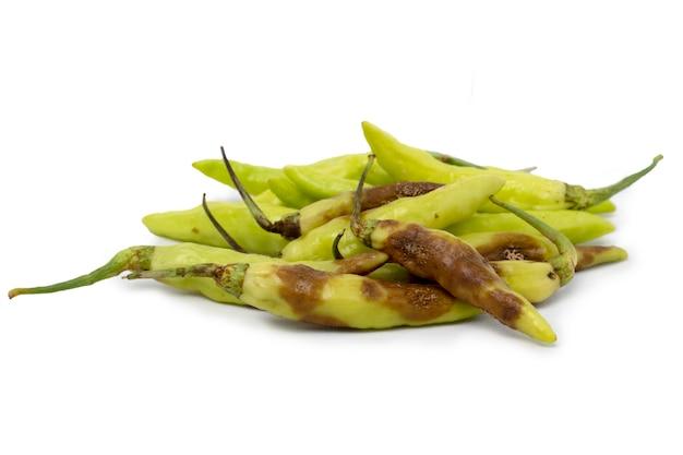 Peperoncino verde nello stampo peperone marcio