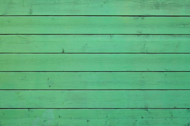 Fondo di legno pastello colorato verde.