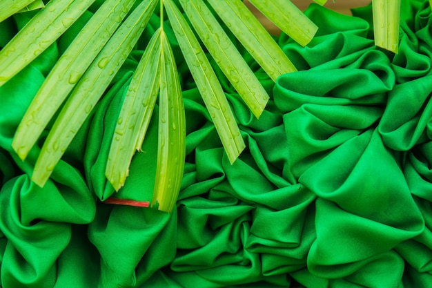 Le tende verdi hanno fatto i fiori, fondo di struttura.