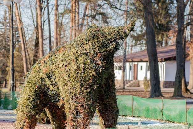 Elefante verde di piante verdi, cespugli tagliati a forma di elefante