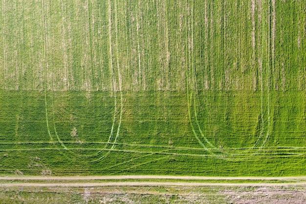 Campo verde con segni di ruote e strada rurale, paesaggio agricolo, veduta aerea