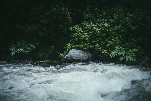 Paesaggio verde della foresta con boschetti selvaggi vicino al potente fiume di montagna. rapide turbolente di potenza sfocata nel torrente di montagna nella foresta oscura. atmosferica scenario naturale con fiume di montagna e flora selvaggia.