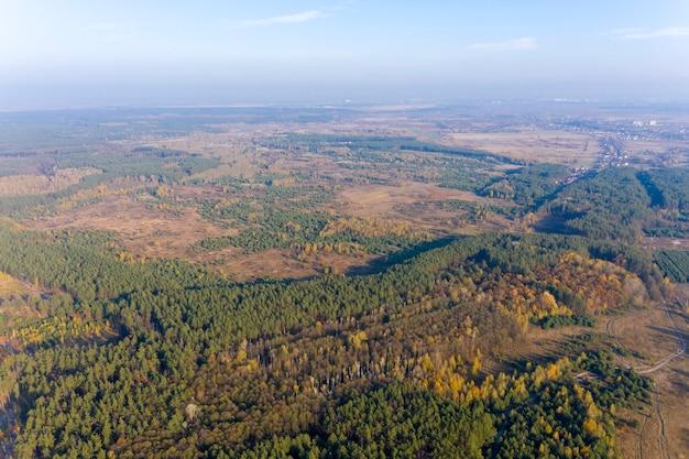 Foresta verde, vista dall'alto
