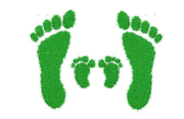 Erba verde fresca del prato inglese a forma di impronte umane