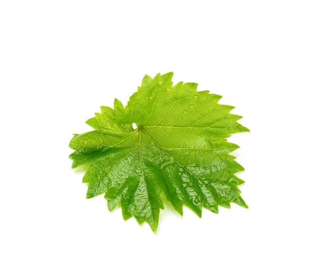 Foglia di uva verde con gocce isolate su superficie bianca, primo piano