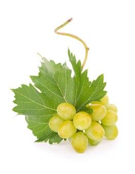 Uva verde con foglie isolate su bianco. con tracciato di ritaglio. profondità di campo completa.