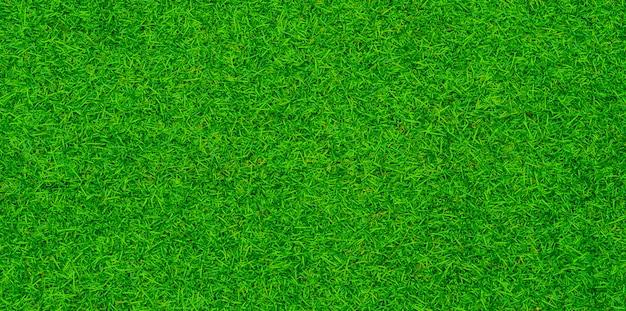 Priorità bassa dell'erba verde, campo di football americano