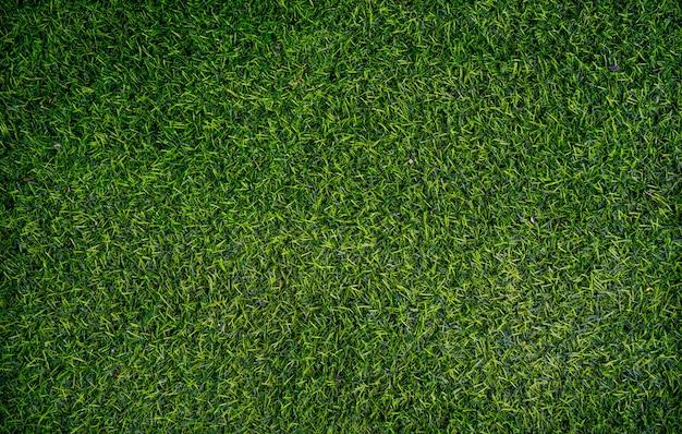 Sfondo di erba verde