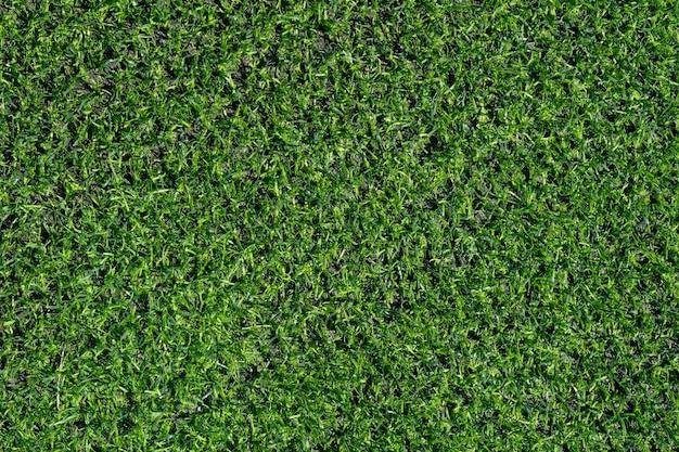 Primo piano dell'erba verde