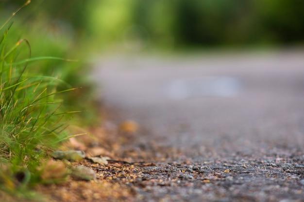 Erba verde ai margini di una strada di campagna