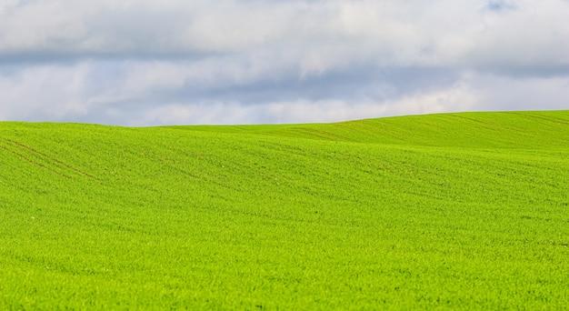Campo di erba verde sulle colline e cielo blu con nuvole nel paesaggio naturale della campagna
