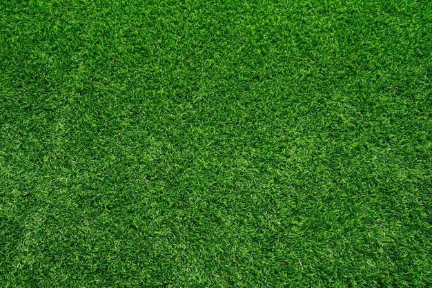 Fondo di struttura dell'erba verde vista superiore del concetto di idea del giardino di erba luminoso