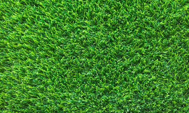 La trama dell'erba verde può essere utilizzata come sfondo