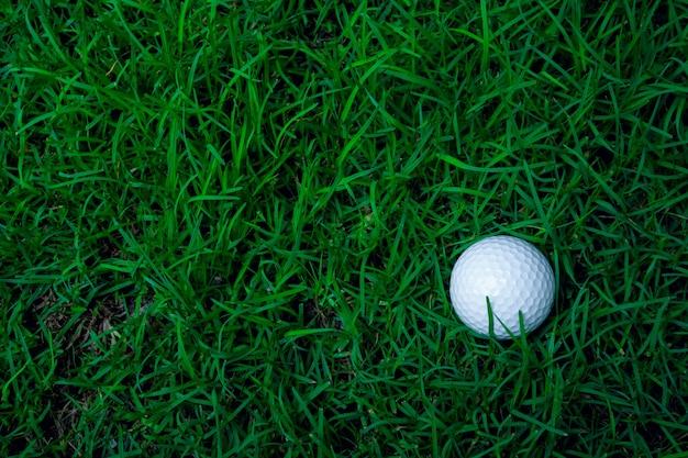 Erba verde con il primo piano della pallina da golf in soft focus alla luce del sole. parco giochi sportivo per il concetto di mazza da golf