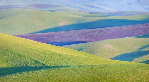 Colline verdi e seminativi. paesaggio rurale di primavera.