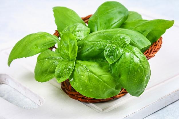 Basilico domestico verde, erba piccante in un cestino