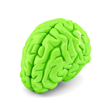 Cervello umano verde. illustrazione 3d. isolato. contiene il tracciato di ritaglio