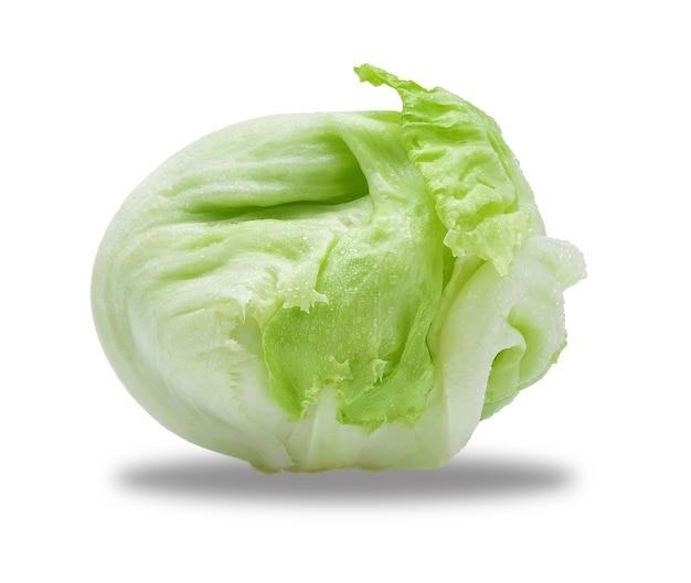 Lattuga iceberg verde.