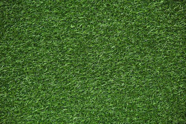 Trama di prato verde, sfondo di erba verde