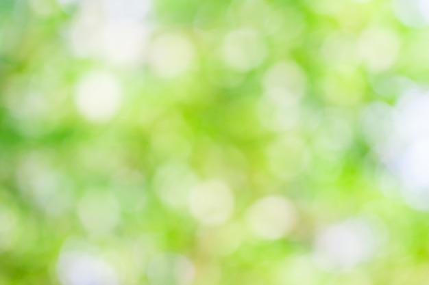 Sfocatura boken foglia verde per sfondo naturale