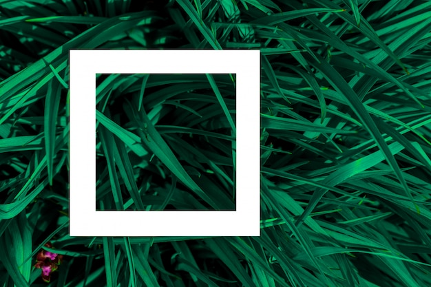 Foglie verdi come sfondo e un foglio di carta bianco per l'etichetta.