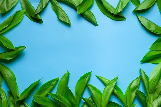 Foglie verdi di mughetto come cornice floreale con spazio copia piatto con sfondo blu blue