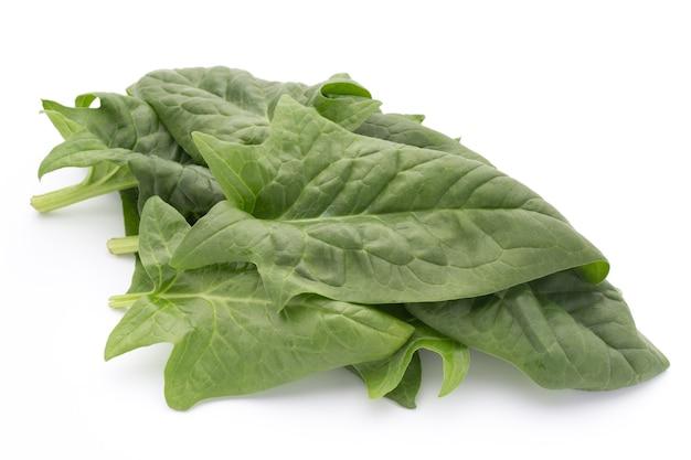Foglie verdi di spinaci isolati su sfondo bianco.