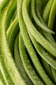 Primo piano di porri verdi, gocce d'acqua, bella consistenza per menu vegetariano o ricette di cibo sano.