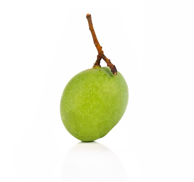 Mango a luce verde su sfondo bianco