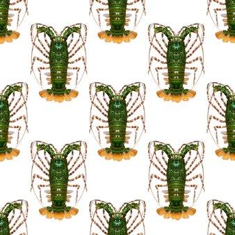 Aragosta verde isolata su uno sfondo bianco. modello senza soluzione di continuità. foto di alta qualità