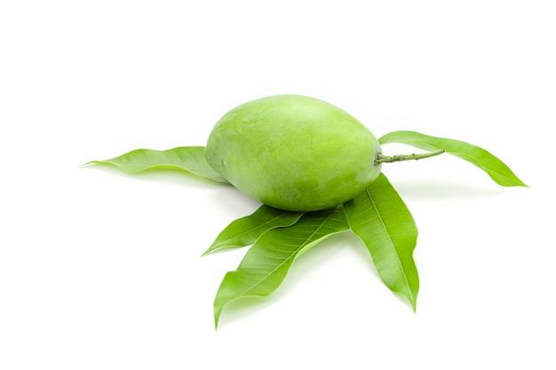 Il mango verde viene posto sulle foglie di mango isolato su sfondo bianco.