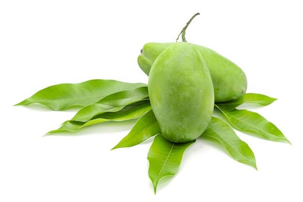 I manghi verdi sono posti sulle foglie di mango isolati su sfondo bianco.