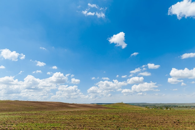 Prato verde sotto il cielo blu con nuvole bellissima natura, paesaggio