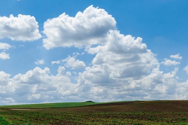 Prato verde sotto il cielo azzurro con nuvole