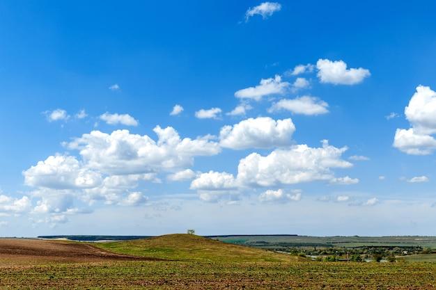 Prato verde sotto il cielo azzurro con nuvole.