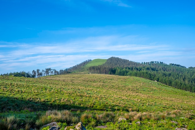 Prato verde in cima al monte adarra a urnieta, vicino a san sebastian. gipuzkoa, paesi baschi