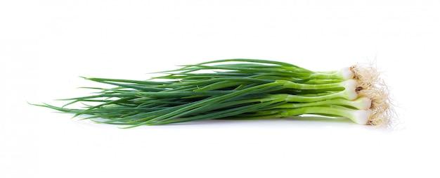 Cipolla verde isolata