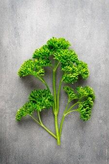 Prezzemolo verde su ardesia scura