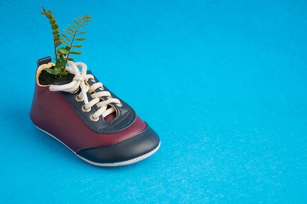 Pianta verde che cresce in scarpe da tennis puerili sveglie isolate sul blu