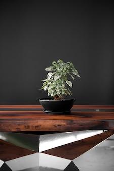 Pianta verde su un lussuoso tavolo in resina epossidica fatto a mano