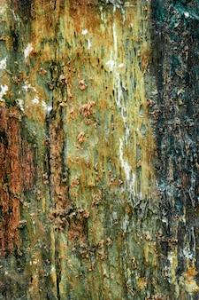 Geologia di struttura variopinta della roccia verde e rossa