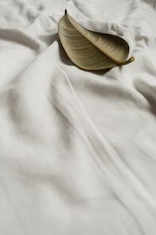 Foglia di ficus robusta della pianta della gomma verde su lino bianco