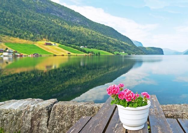 Paesaggio marino idilliaco rurale verde nei fiordi norvegesi con la riflessione e il vaso di fiori, norvegia.