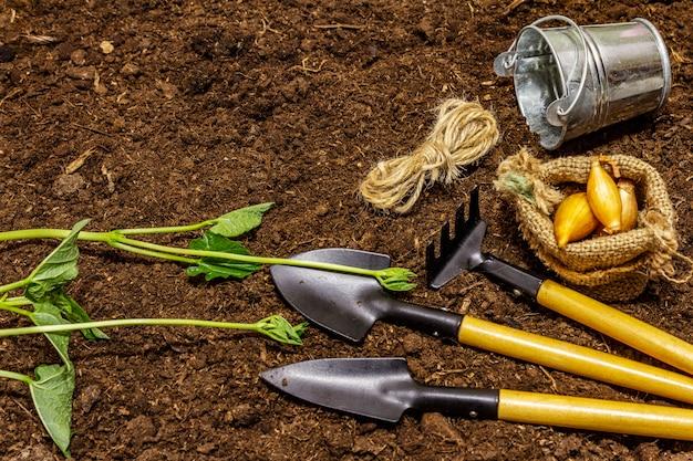 Piantine e strumenti di giardino verdi sul fondo del suolo. pronto per la semina in piena terra. concetto di cura delle piante
