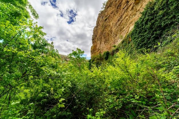 Paesaggio primaverile verde con piante, scogliere rocciose e cielo blu con nuvole. segovia, spagna,