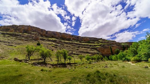 Paesaggio primaverile verde con alberi, colline e cielo blu con nuvole bianche, atmosfera soleggiata. segovia, castilla leon,