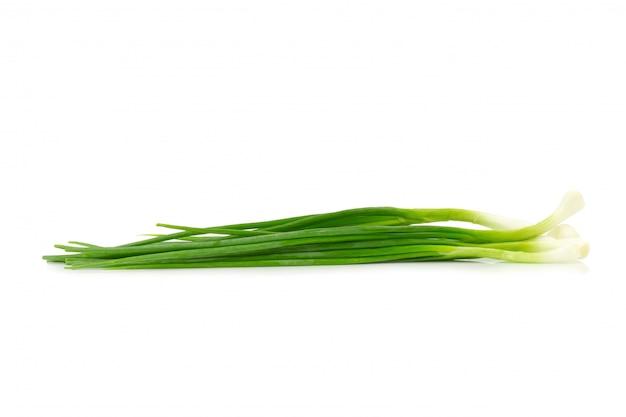 Cipollina verde su sfondo bianco