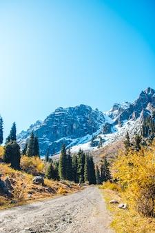 Abete verde sullo sfondo di montagne innevate. cielo sereno. paesaggio di montagna autunnale.