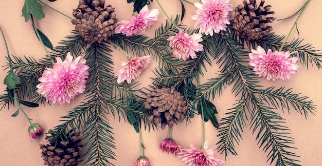 Rami di abete verde con coni e fiori di crisantemo rosa su sfondo pastello