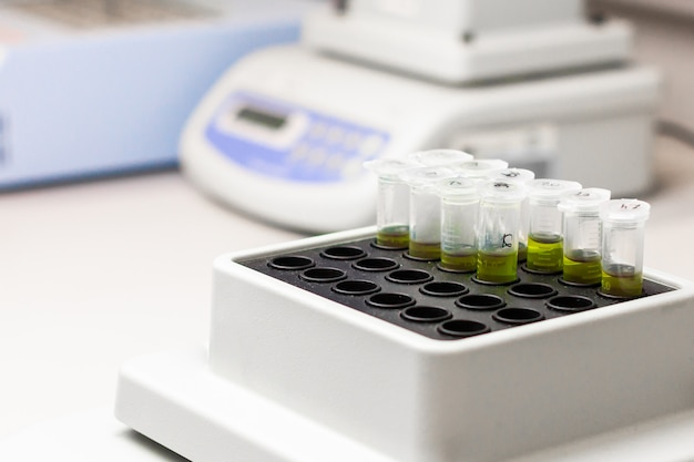 La sostanza verde in microtubo viene messa in un agitatore termico. esperimento di dna in laboratorio biochimico